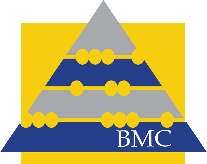 BMC Accounting Web